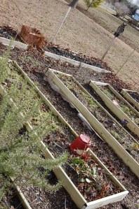 Garden Graveyard